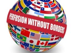 Perfusion Without Borders – Scholarship Winner